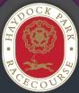 Hip. Haydock Park